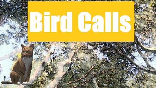birdcalls.jpg